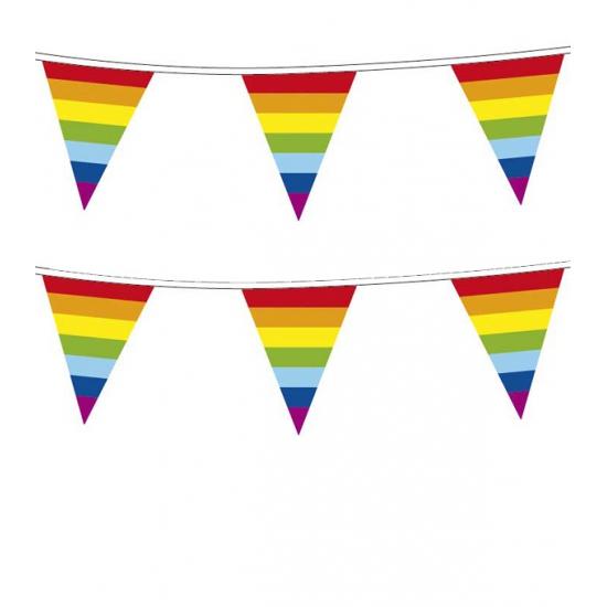 Image of 10 meter regenboog vlaggenlijnen plastic