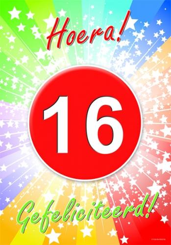 Image of 16 jaar feestartikelen poster