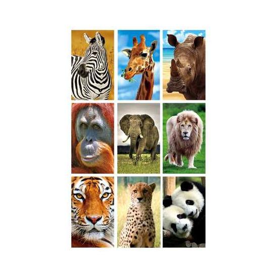 Image of 3D stickerset dieren
