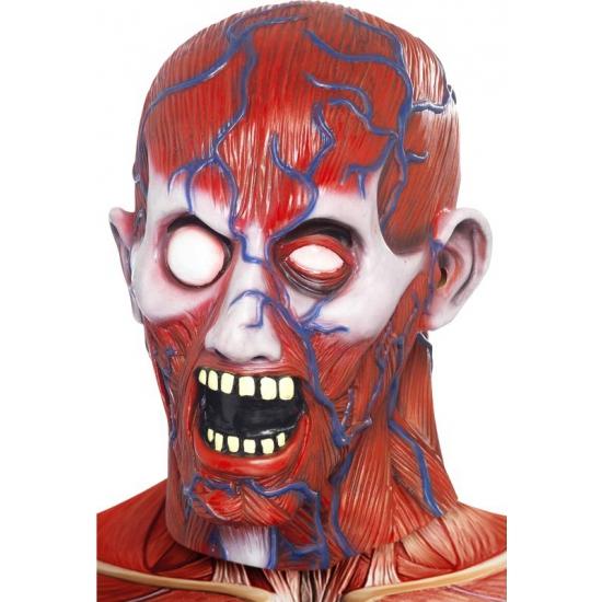 Image of Anatomisch horror masker