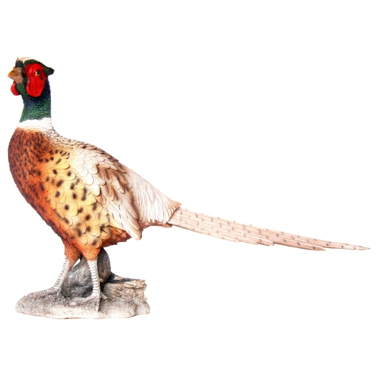 Image of Beeld fazant 52 cm