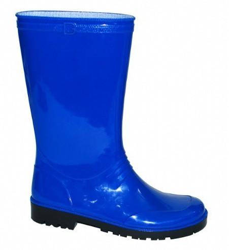 Image of Blauwe dames regenlaarzen Iris