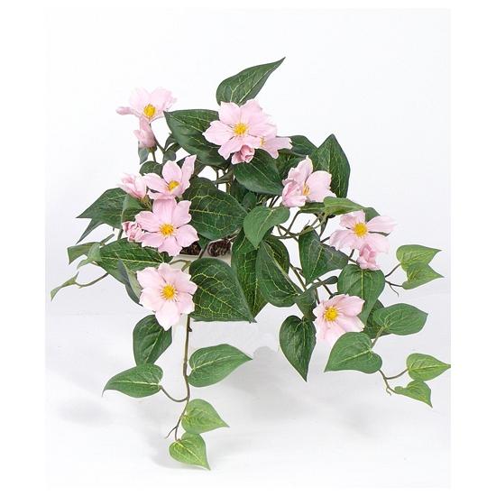 Image of Bosje kunst clematis roze 60 cm
