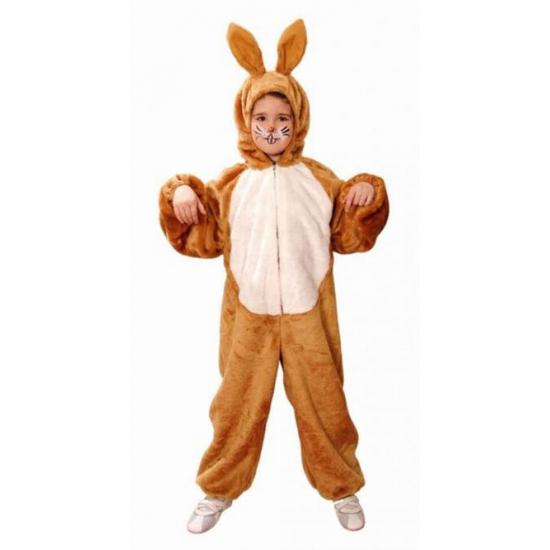 Image of Bruine haas kostuum voor kinderen