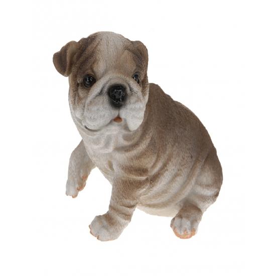 Image of Bulldog beeldje zittend 13,5 cm type 3