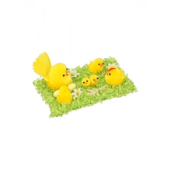 Deco kuikentjes familie op gras