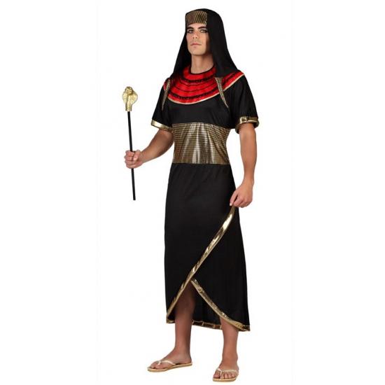 Image of Egyptenaren kostuum voor volwassenen