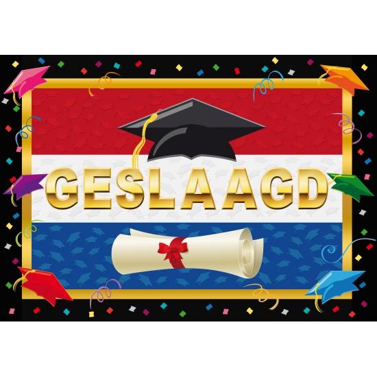 Image of Feestartikelen poster geslaagd