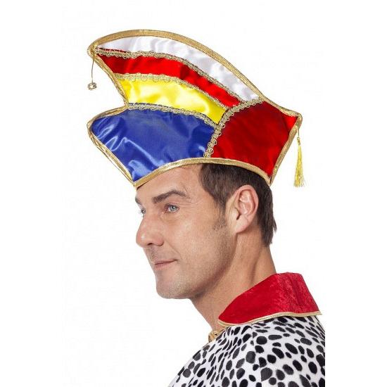 Image of Gekleurde prinsen hoed