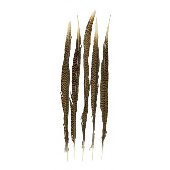 Image of Goudfazant veren 50 cm 5 stuks