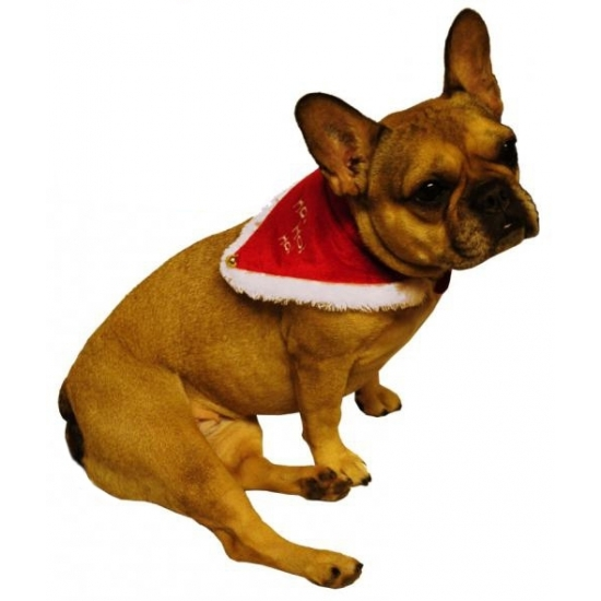 Image of Honden en katten kerst verkleed halsband