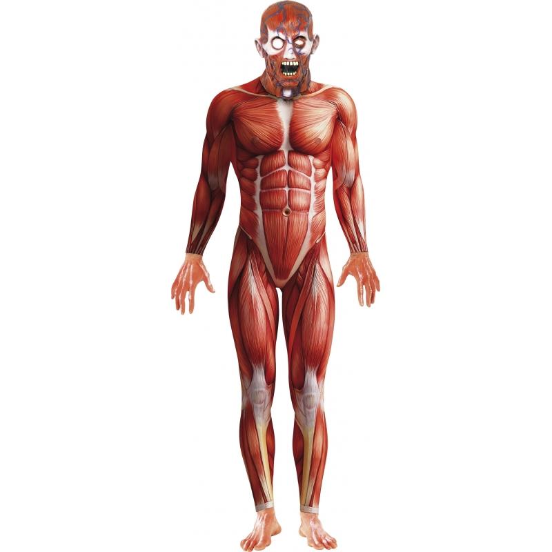 Anatomische man horror bodysuit. angstaanjagend kostuum van een gevild lichaam, met masker. de bodysuit zit ...
