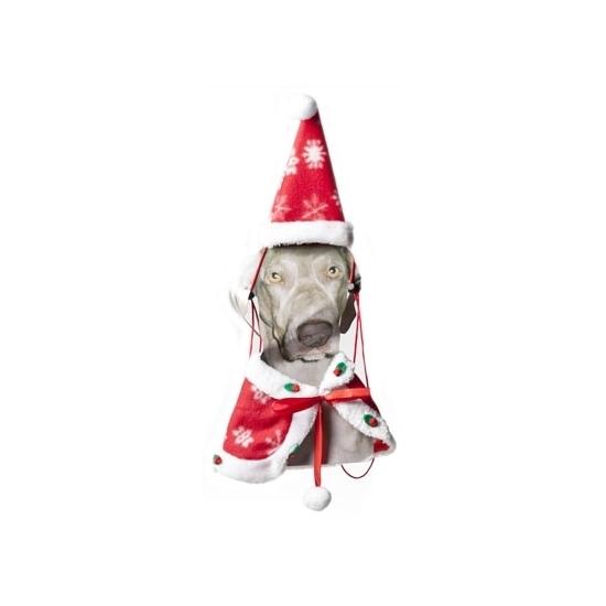 Image of Kerst cape en kerstmuts voor de hond