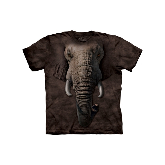 Image of Kids all-over print shirt olifant