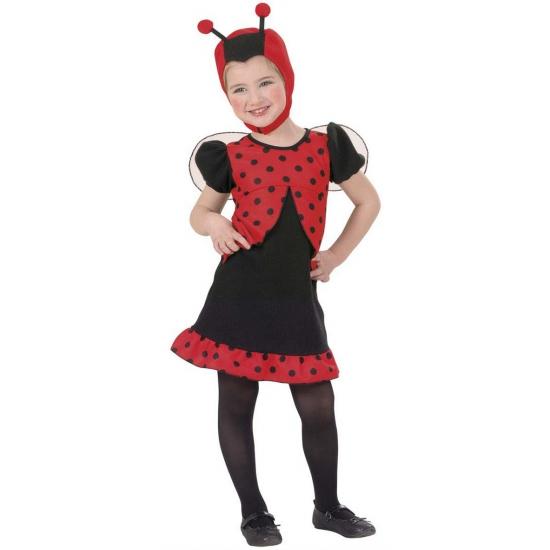 Lieveheersbeestje kostuum voor meisjes. dit lieveheersbeestjes kostuum bestaat uit een jurkje, vleugeltjes en ...