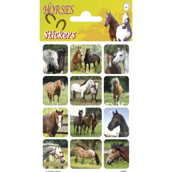 Paarden stickers landschap 3 vellen