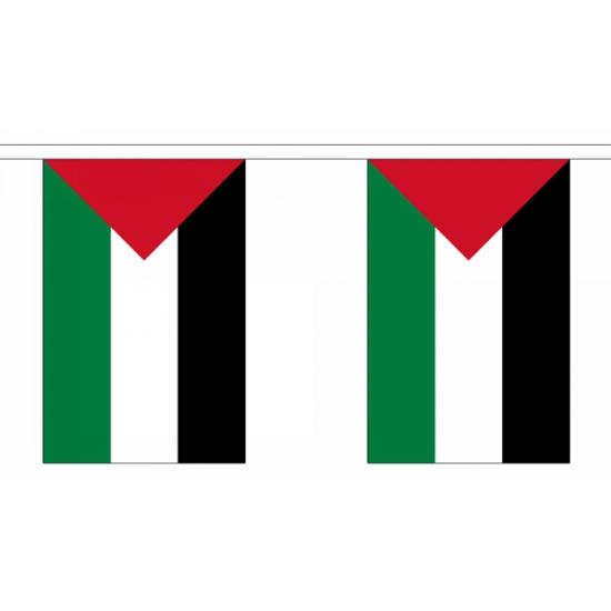 Palestina vlaggenlijn 9 meter