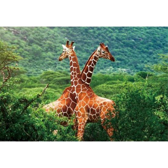 Image of Placemat giraffe 3D 28 x 44 cm