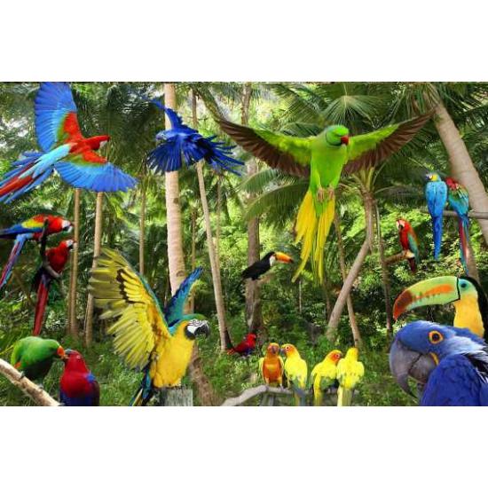 Image of Placemat tropische vogels 3D 30 x 40 cm