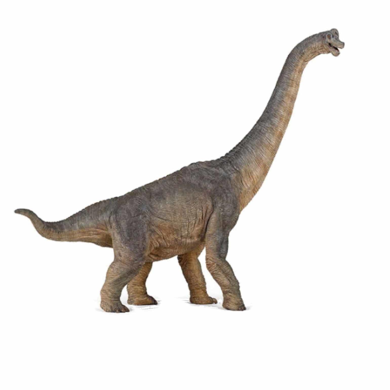 Image of Plastic braciosaurus dinosaurus 39,5 cm