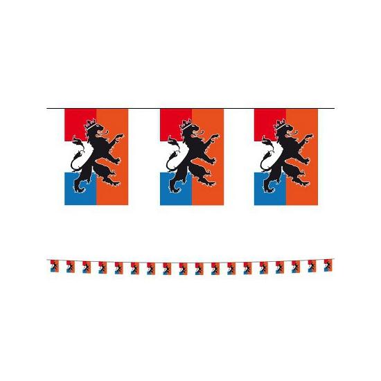 Plastic Holland vlaggenlijn 10 m