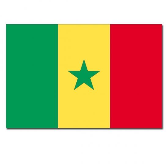 Senegalese vlaggen