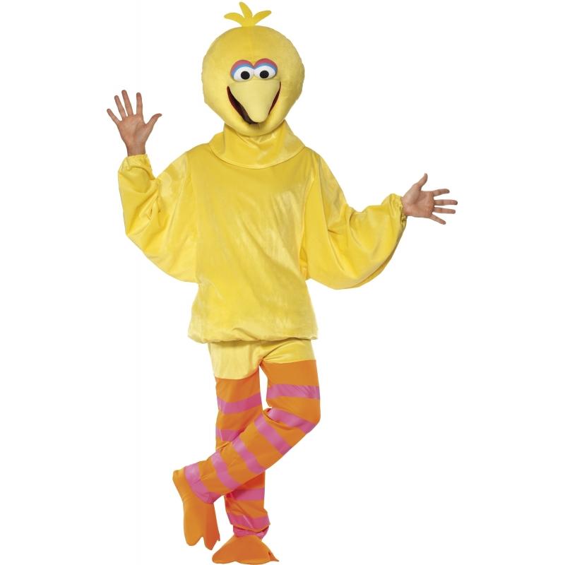 Image of Sesamstraat carnavalskleding Pino