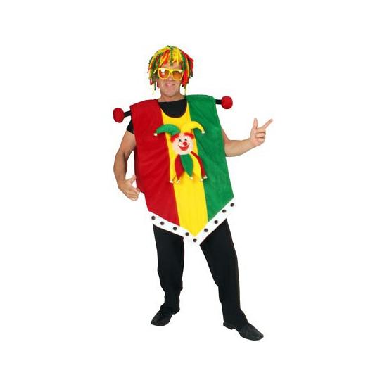 Vaandel limburg kostuum, one size voor volwassenen. dit grappige carnaval kostuum trekt u gemakkelijk over uw ...