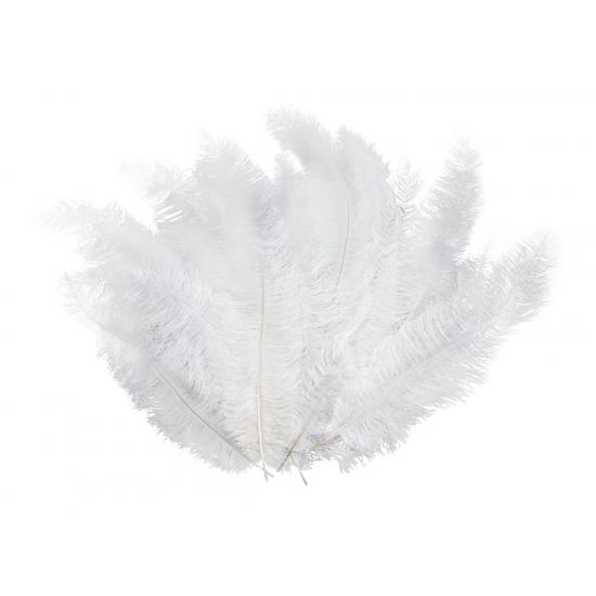 Image of Veren in de kleur wit 12x