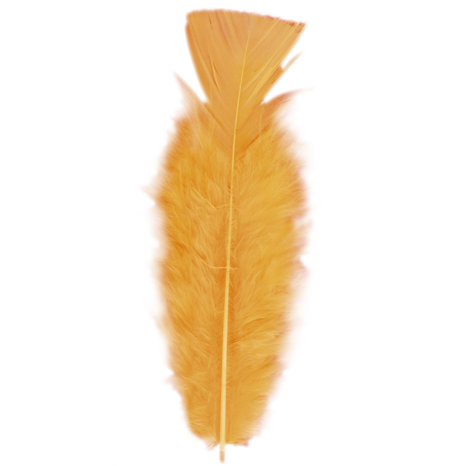 Image of Veren kleur oranje 50 stuks