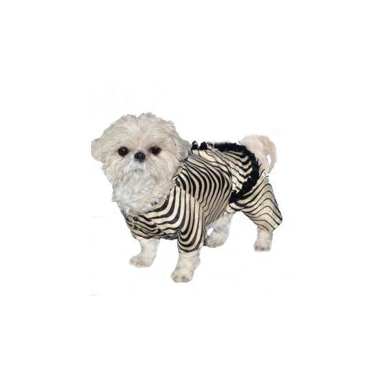 Image of Zebra honden kostuums