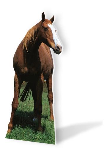 Paarden decoratie bord 190 cm