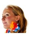 Grote oorbellen in Holland kleuren