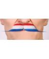 Holland snorren rood/wit/blauw