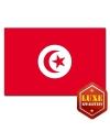 Tunesische landen vlag