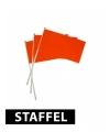 Oranje vlaggetjes 20 x 30 cm