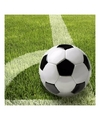 Voetbal servetten 33 x 33 cm