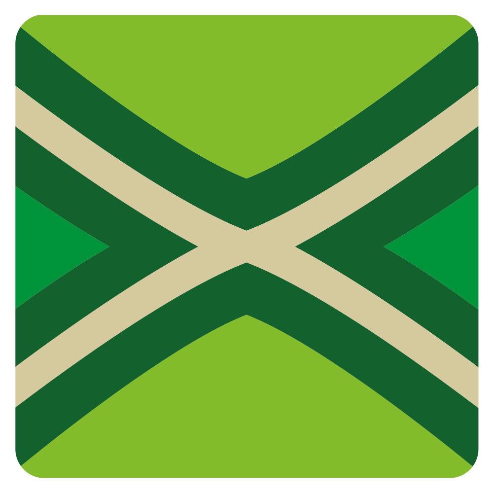 15x stuks Achterhoekse vlag onderzetters / bierviltjes van karton