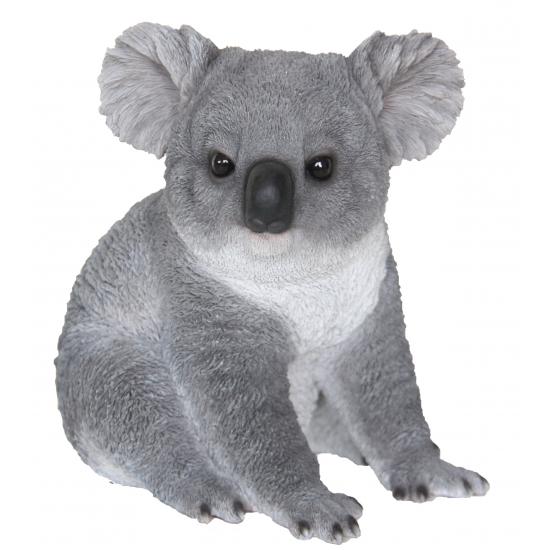 20ffdb339ecd21 Beeldje koala beer 22 cm in oranje artikelen winkel Oranjeshopper