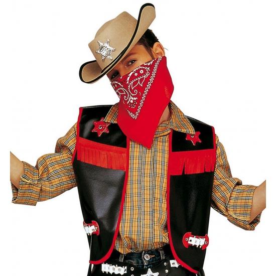 Carnavalskleding Geschiedenis kostuums Cowboy kleding