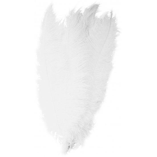 Grote decoratie veer/struisvogelveren wit 50 cm. deze witte spadonis sierveren/decoratieveren zijn afkomstig ...