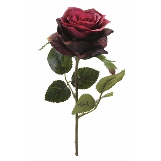 Plastic roosjes bloem donker rood