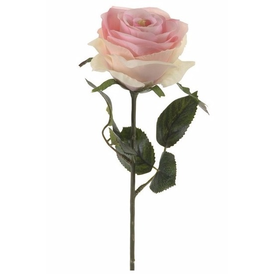 Plastic roosjes bloem licht roze