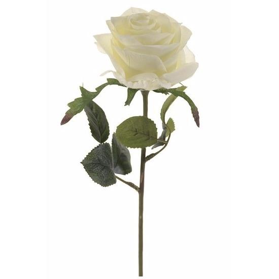 Plastic roosjes bloem wit